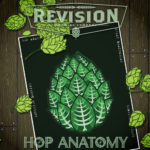 Hop Anatomy